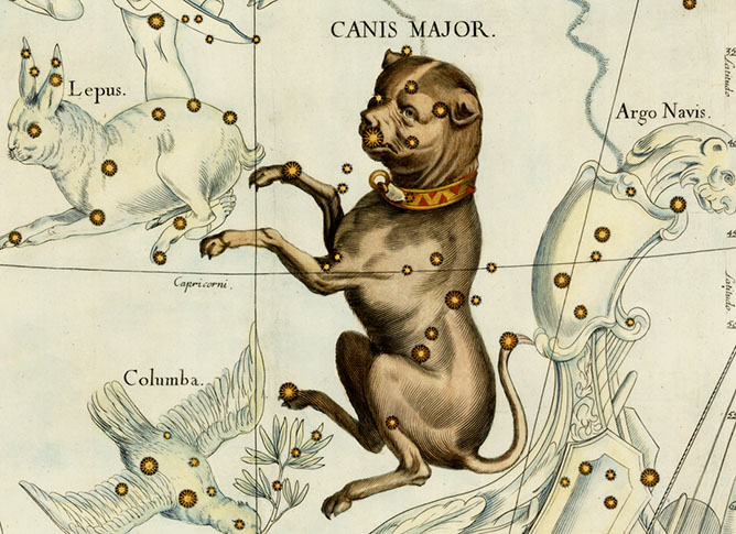 Canis Major, The Greater Dog