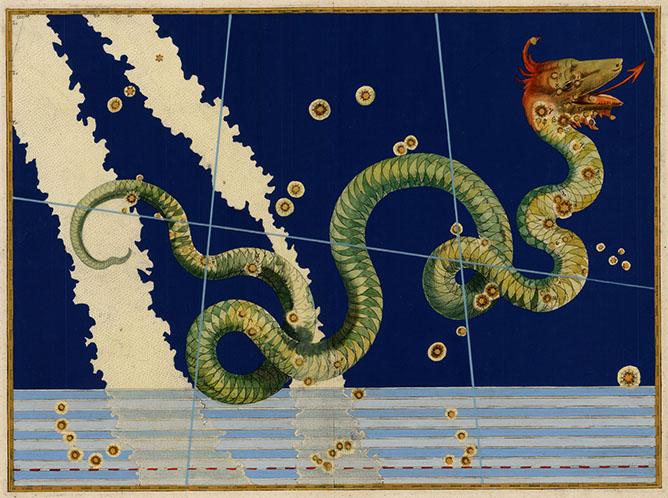 Serpens, The Serpent
