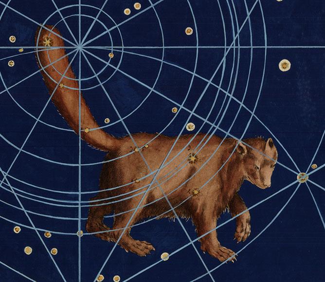 Ursa Minor Little Bear Myth Ursa Minor Constellati...