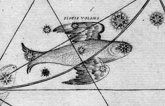 Volans, The Flying Fish
