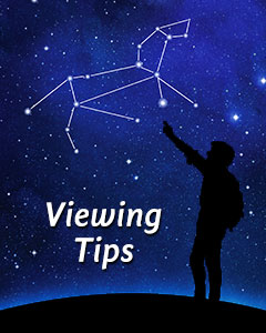 Night Sky Viewing Tips
