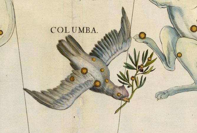 Columba, The Dove