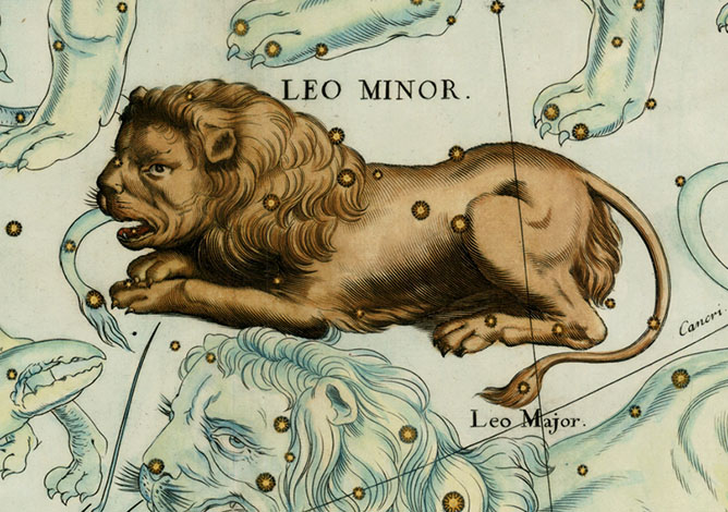 Leo Minor, The Little Lion