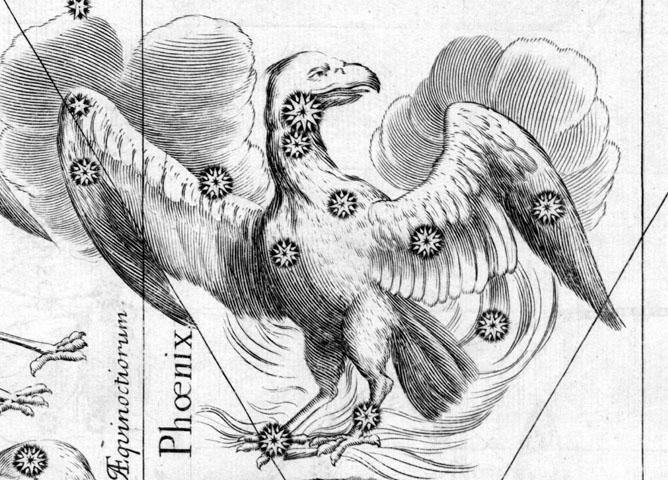 Phoenix, The Phoenix